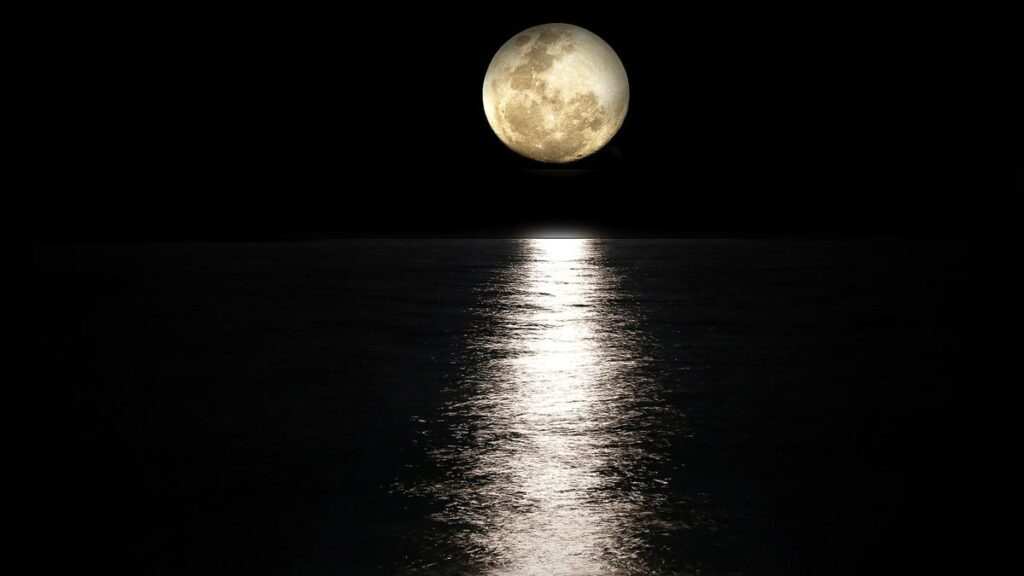 The Moon is satellite of the Earth