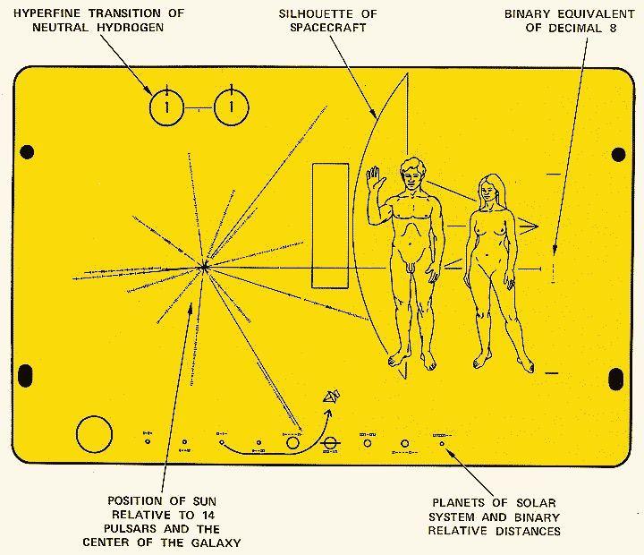 Voyager placa