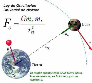 Gravedad. Biography of Isaac Newton
